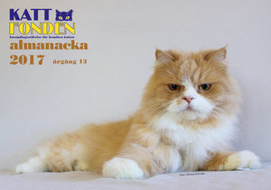 Kattfonden almanacka 2017