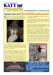 thumbnail of Nyhetsbrev 2/2013